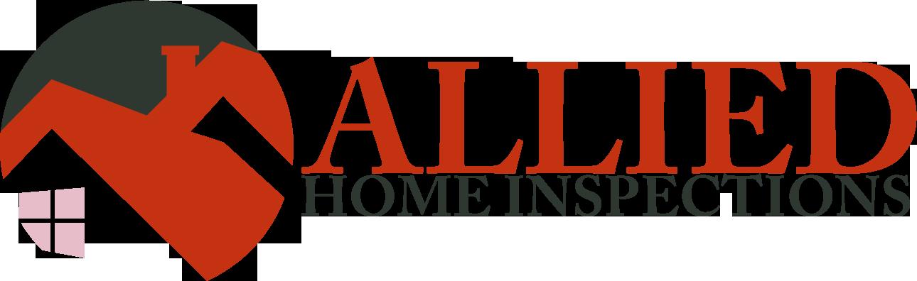 EZ Home Inspection Websites Style 3